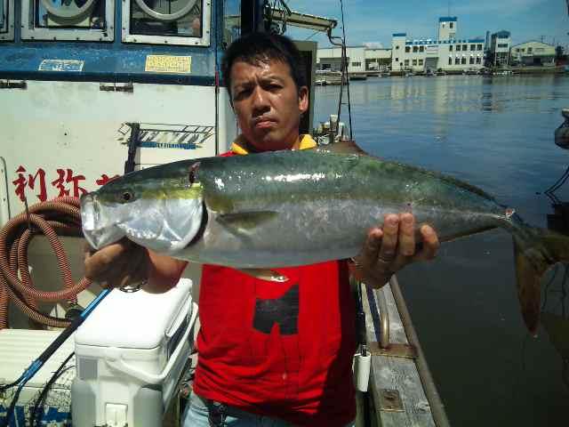 午前便 釣果は、メジロ75㌢ハマチ:サバ30本ホウボウでした。
