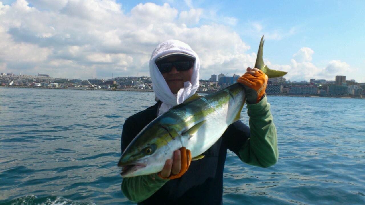 昨日の釣果は、ブリ2本メジロ38本タチウオでした。