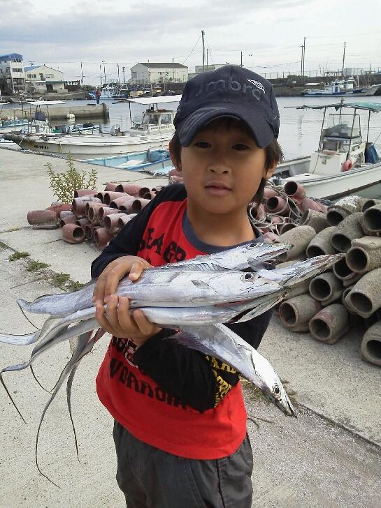 釣果は、メジロ5本サワラ1本サゴシ2本タチウオまあまあでした。