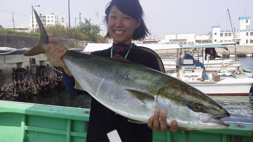 水曜の釣果7人ブリ1本メジロ2本サゴシ、サワラ30本以上サバ12本アジ25本でした。