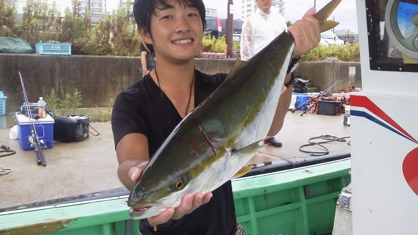 昨日の釣果はメジロ10本でした。
